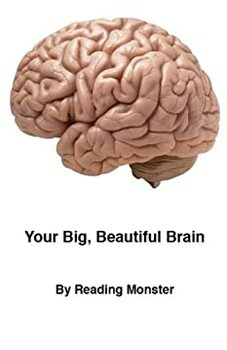 Your Big, Beautiful Brain